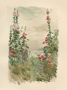 childe-hassam-hollyhocks-in-late-summer-chromolithograph-1345849698_b