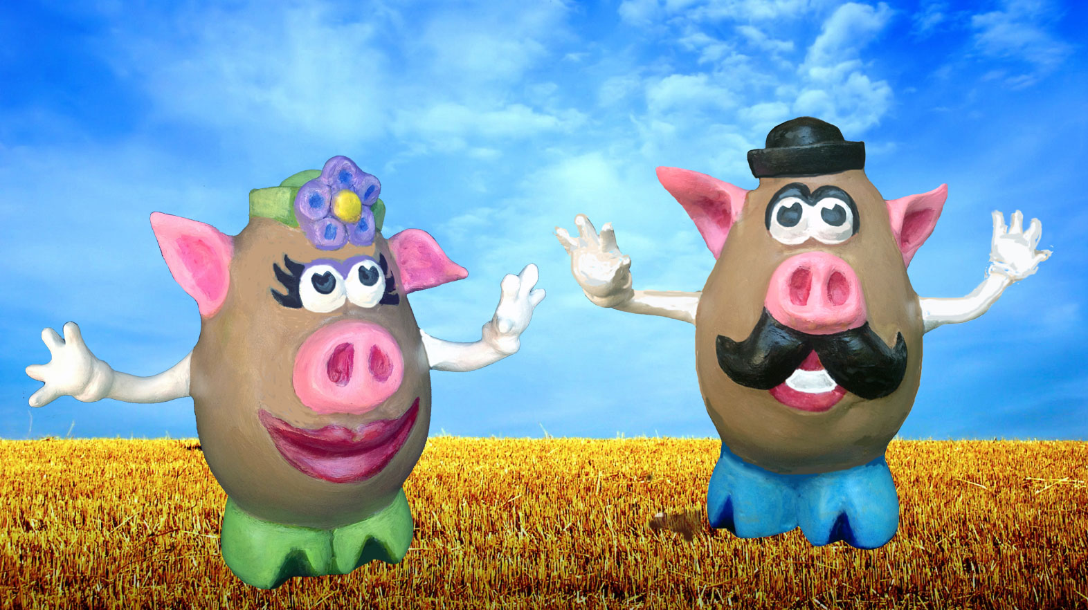 Mr. and Mrs. Pigtato Head in a Field